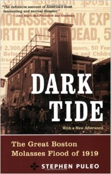 Cover of Dark Tide