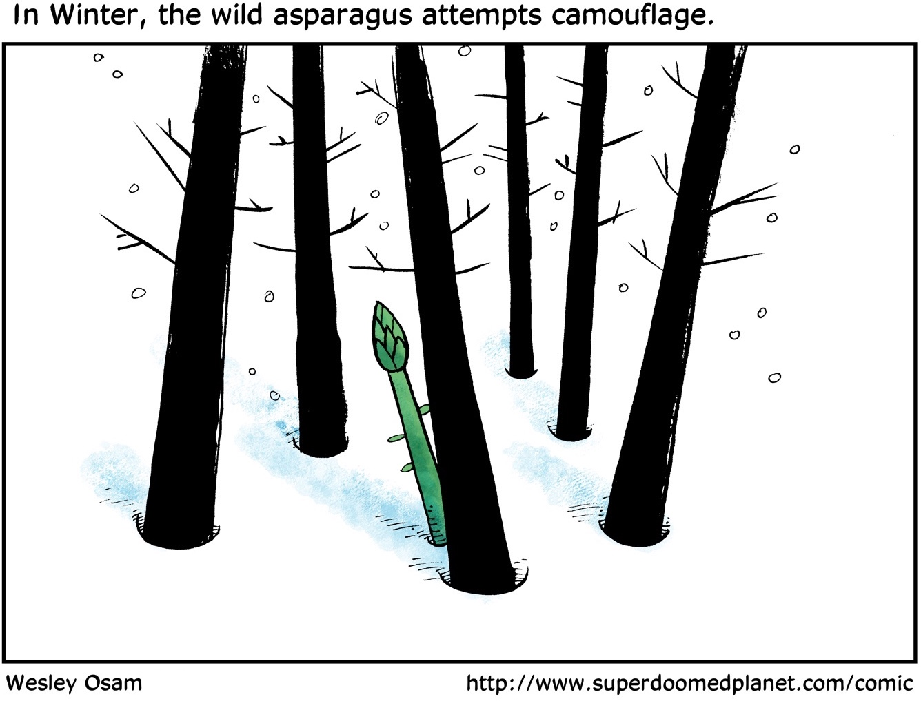 Cartoon--An Asparagus Fact